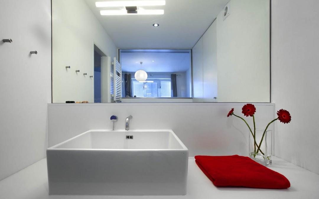 Rekonstrukce bytu v Brně a modernizace bytu v panelovém domě (2009-10)