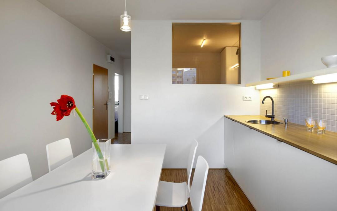 Probuzení bytu do prostoru a světla (2010-02)